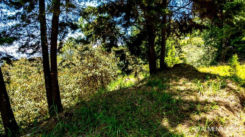 almenares-parcelacion-lotes-envigado-20190827-121814