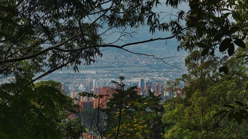almenares-parcelacion-lotes-envigado-20190830-1105012